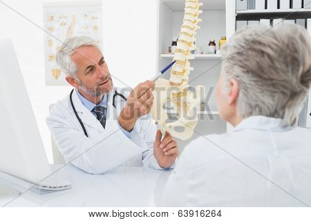 Male doctor explaining the spine to senior patient at desk in medical office