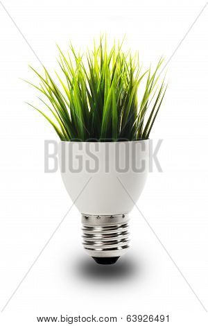 bulb with grass