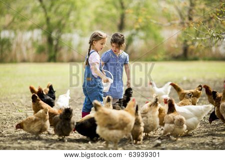 Two Little Girls Feeding Chickens