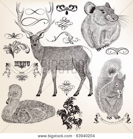 Collection Of Vector  Animals And Flourishes For Design