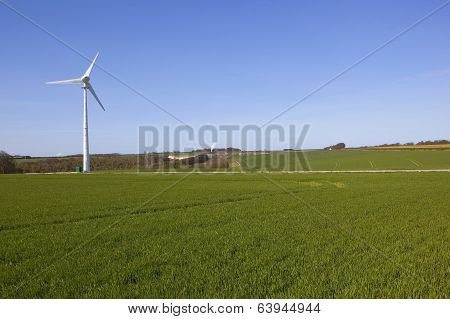 Wind Turbine And Wheat