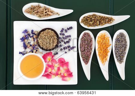 Medicinal herb selection also used in witches magical potions over wooden green background.