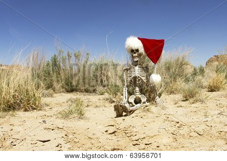 Christmas in the Desert Concept
