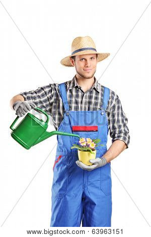 Male horticulturist watering a plant isolated on white background