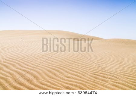 Sand Dunes On The Beach In Maspalomas.