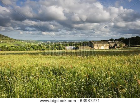 Farmhouse in a field of Hay
