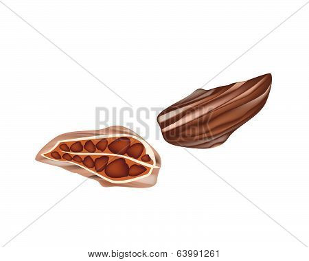 Whole And Half Cardamom Pods On White Background