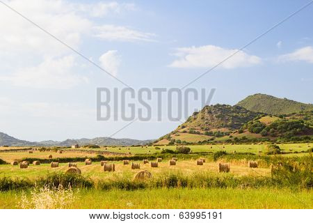 Menorca island landcape with farmland and green hills in sunny day, Spain.