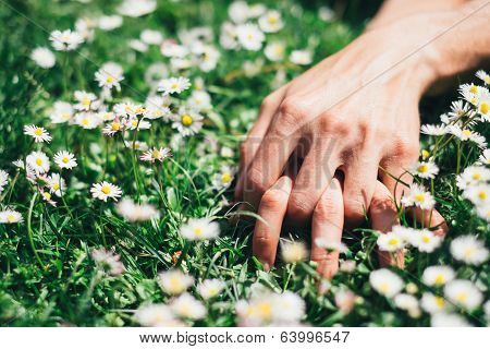 Love And Passion Hands On Spring Flowers