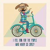stock photo of dog tracks  - Hipster poster with nerd dog riding bike vector illustration - JPG
