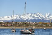 picture of tierra  - Sailing boats in port of Ushuaia Tierra del Fuego Patagonia Argentina - JPG
