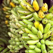 foto of guayaquil  - Banana Bunches Latin America street market Ecuador Guayas province - JPG