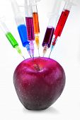 picture of modification  - Genetic modification of fruit with a syringe full of chemicals - JPG