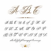 stock photo of hand alphabet  - vector hand drawn calligraphic Alphabet based on calligraphy masters of the 18th century and tattoo artists of 20th century - JPG