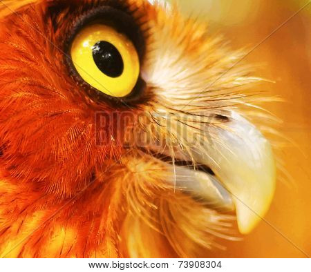 eps10 vector photo realistic postcard close up owl animal background