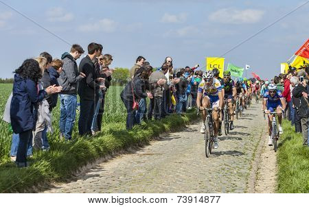 The Peloton- Paris Roubaix 2014