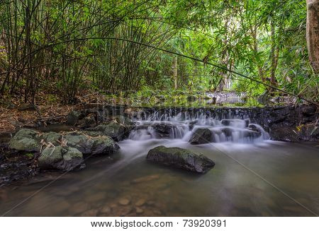 Waterfall In Bamboo Forest