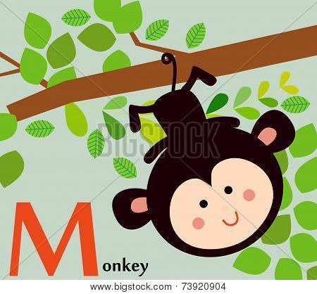 Animal alphabet for the kids: M for the Monkey