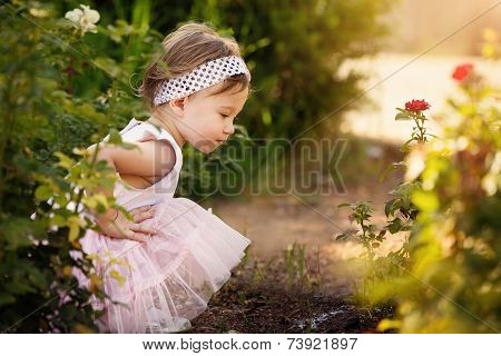 Beautiful Toddler A Garden Looking At Flowers