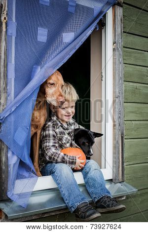 Beautiful blond boy sitting on window sill with two dogs and hold pumpkin
