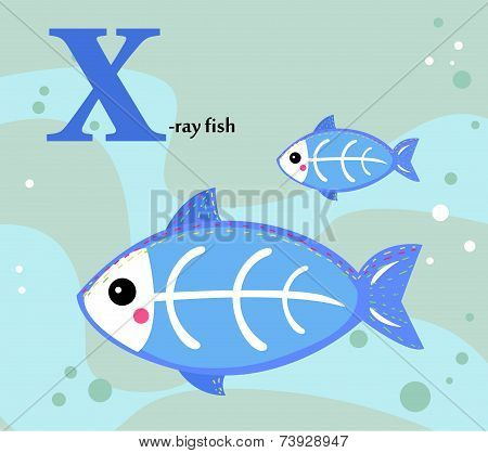 Animal alphabet for the kids:  X for the X-ray fish