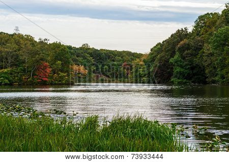 Perrineville Lake Scene