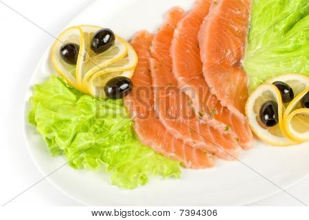 Salmon Closeup