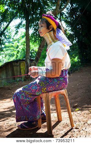 Karen Long Neck Woman With Brass Coils. Thailand