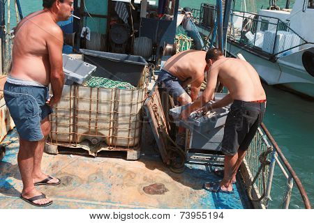 Fishermen Unload The Catch Of Mullet