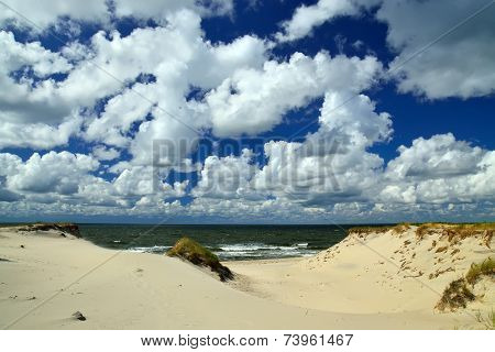 Beautiful Baltic Dunes. Kaliningrad Region, Russia