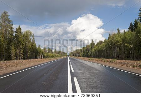 New Asphalt Road Through The Wood