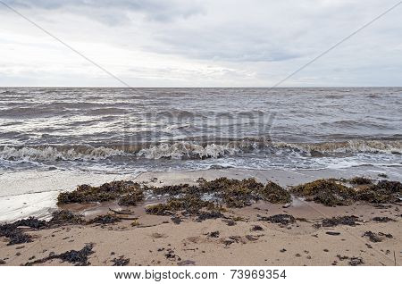 Coast Of The White Sea, Cloudy Sky