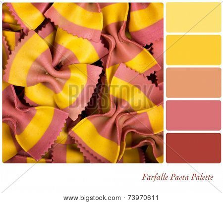 Speciality farfelle pasta with yellow and pink stripes, in a colour palette with complimentary colour swatches.