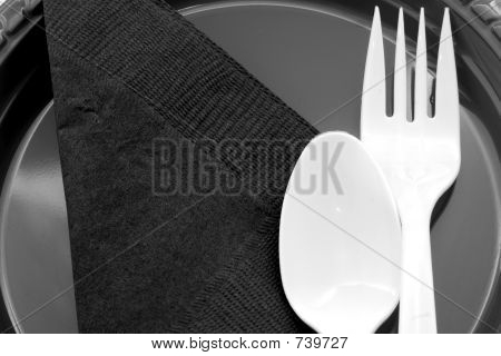 Place setting for a picnic