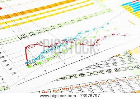 Business Reports In Multicolor Graph