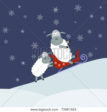 Sheep sledding. Vector illustration