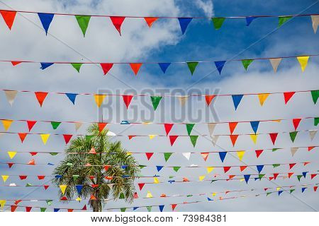 Banner Flags Under Tropical Sky