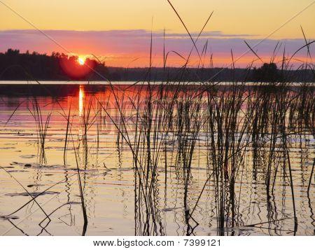 Pink Sunset On  Lake