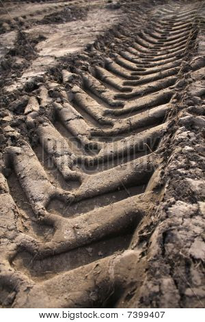 Car tracks on the ground
