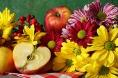 foto of chrysanthemum  - Composition with chrysanthemum and fruits on wooden background - JPG