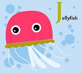 stock photo of jellyfish  - Animal alphabet for the kids - JPG