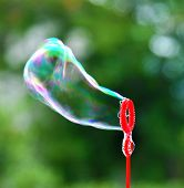stock photo of blowing  - Soap bubble blowing - JPG