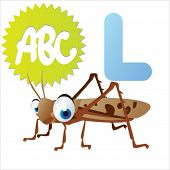 stock photo of locust  - L is for Locust - JPG