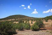 picture of southwest  - Southwest Landscape  - JPG