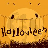 stock photo of roping  - Halloween stylish text hanging on rope and owls sitting on rope for Halloween party celebration poster design - JPG