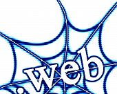 picture of spider web  - extension of a website on a white background - JPG