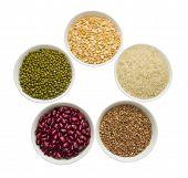 pic of mung beans  - Buckwheat - JPG