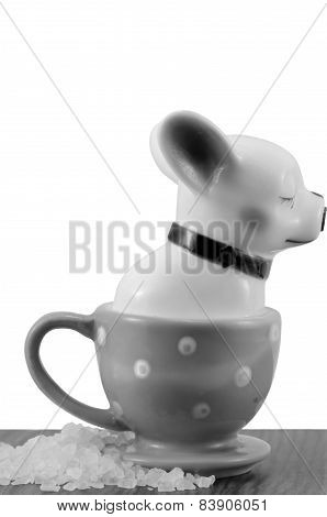 Salt shaker french bulldog isolated on white