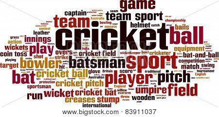 Cricket Word Cloud