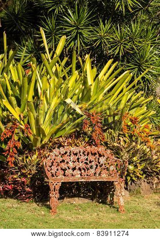 Tropical Flowers Overwhelm Cast Iron Seat